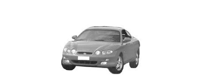 Coupe 99/01